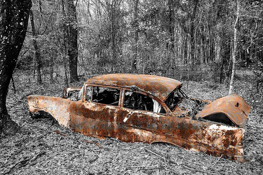 "A rusting vintage 1950s-era Chevrolet Bel Air is ""grounded,"" moored amid black and white foliage by Lisa Faire & Bill Graham Rust Works Series."