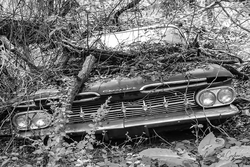 Black & White late 1950s Chevrolet Impala Grille