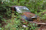 Vintage Plymouth camouflaged by foliage