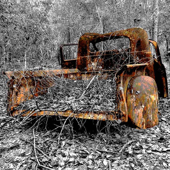 A rusting vintage 1940s-era Studebaker truck amid a backdrop of foliage, rendered in black & white.