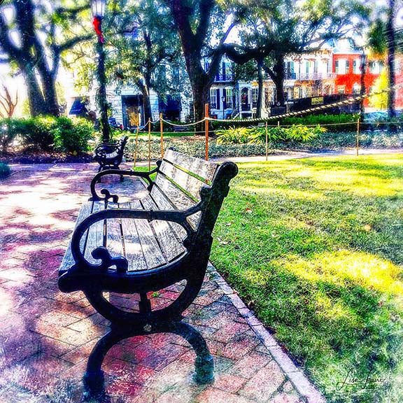Savannah Square - Lisa Faire Graham Fine Art Photography - Pix Synergy LLC