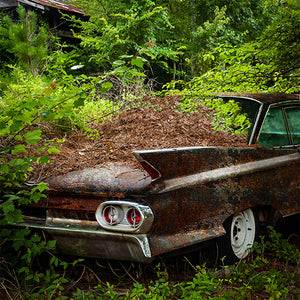 VIntage Cadillac with varying rust patterns near a rusting shed by Lisa Faire Graham