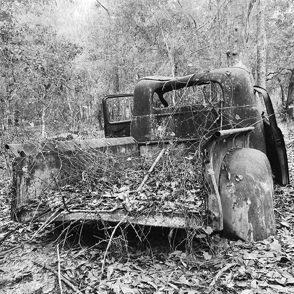 A rusting vintage 1940s-era Studebaker truck amid a backdrop of foliage, rendered in black & white. By Lisa Faire Graham