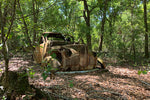 Studebaker in the Woods - Lisa Faire Graham Fine Art Photography - Pix Synergy LLC