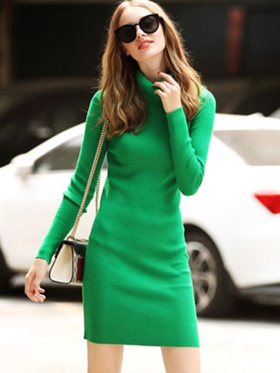 Plain Pullover Turtle Neck Sweater Dress