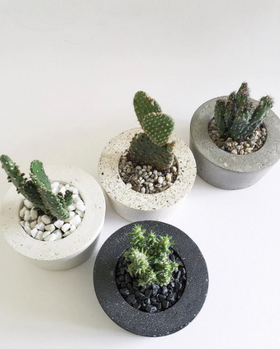the plant lab concrete pots