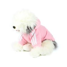 ADIDOG Hoodie in Pink by The Paw Wag Company