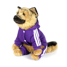 ADIDOG Tracksuit in Purple by The Paw Wag Company