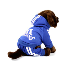 ADIDOG Tracksuit in Royal Blue by The Paw Wag Company