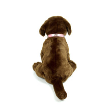 Dog Bone Collar in Pink by The Paw Wag Company