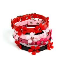Daisy Collar by The Paw Wag Company