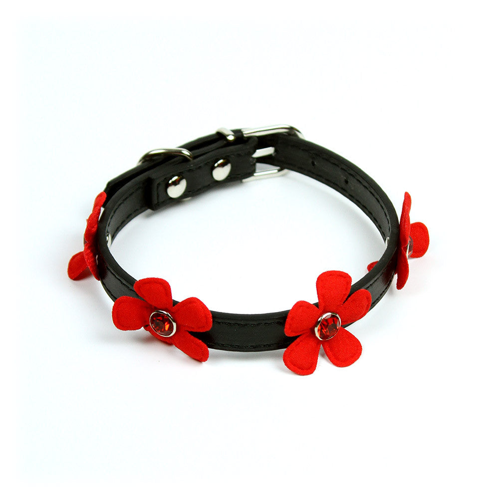 Daisy Collar in Black by The Paw Wag Company
