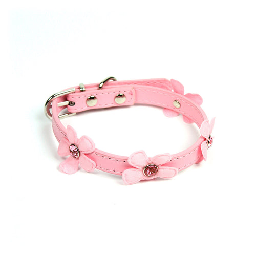 Daisy Collar in Pink by The Paw Wag Company