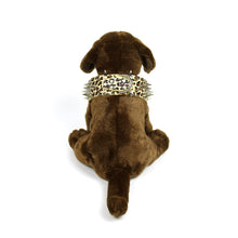 Leopard Print Spiked Collar in Khaki by The Paw Wag Company