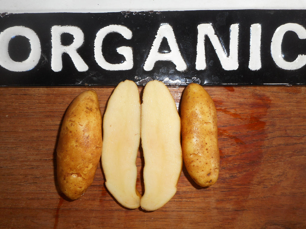 Potato-Austrian Crescent (Organic)