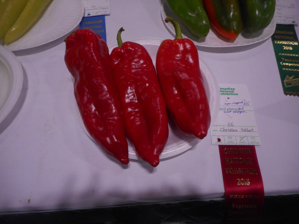 Pepper- Super Sheppard (Organic)