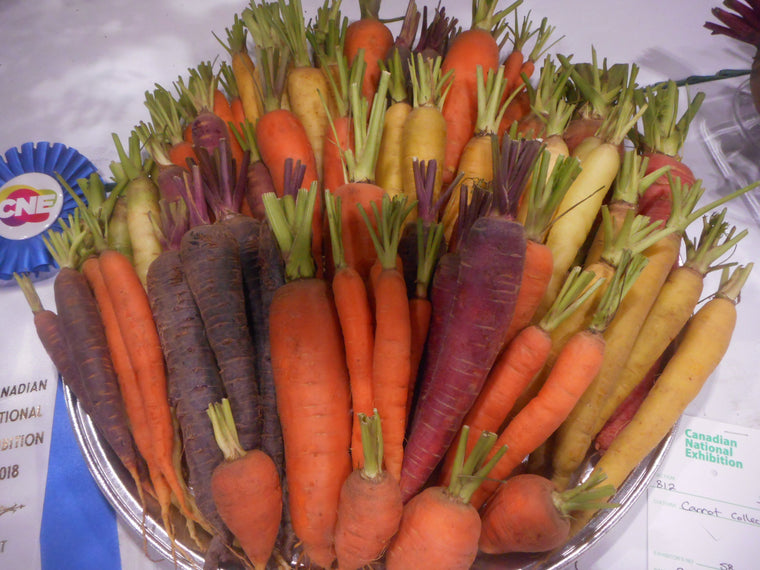 Carrot-Captain Peacock's Crazy Carrot Mix-pelleted seed