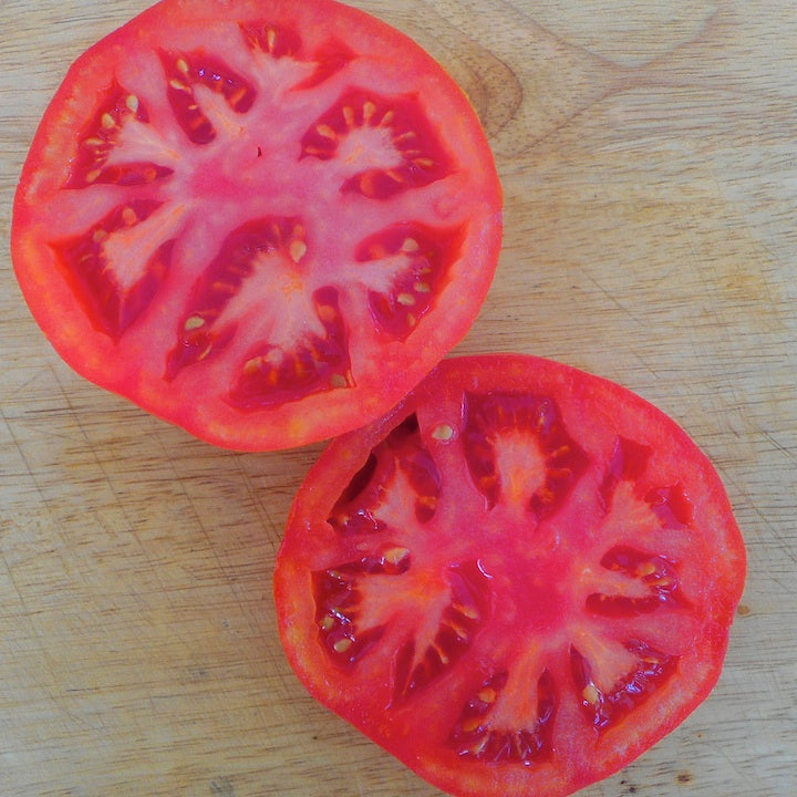 Tomato, Irish Supreme (Organic)