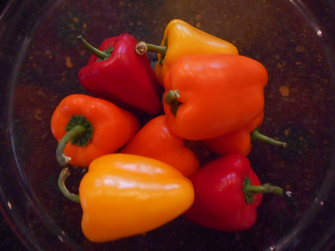 Pepper-Captain Peacock's Perfect Pepper Mix (organic)