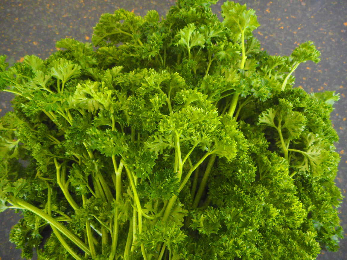Parsley- Dark Green improved (Organic)