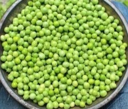 Pea-English Shelling Pea (Organic)