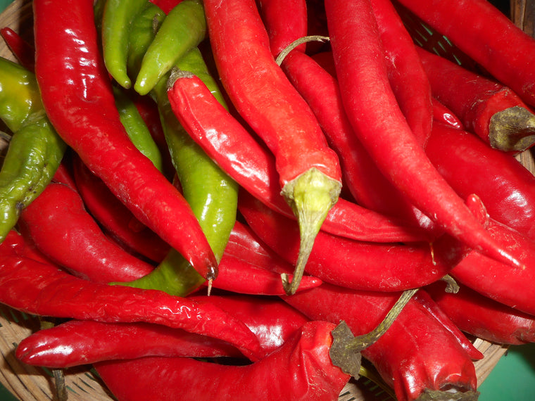 Pepper-Tabasco (Organic)