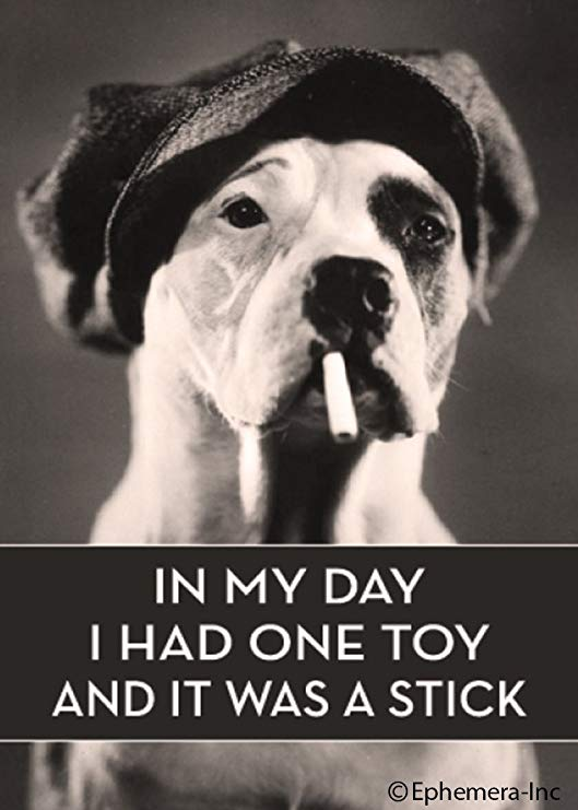 In My Day I Had One Toy And It Was A Stick. Ephemera Refrigerator Magnet Fridge Magnet