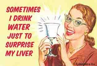 Sometimes I Drink Water To Surprise My Liver Ephemera Refrigerator Magnet Fridge Magnet