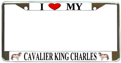 BrownInnovativeMedia Cavalier King Charles Love My Dog Photo License Plate Frame Holder Chrome