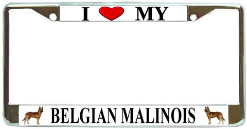 Belgian Malinois Love My Dog Photo License Plate Frame Holder Chrome
