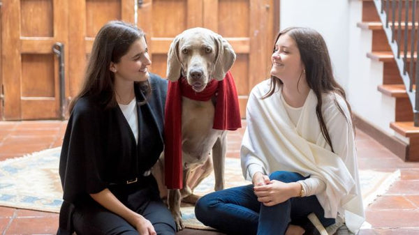 Two young girls sitting on the floor with a Weimaraner dog wearing a red scarf