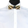Banded Mussel Shell Bow Tie, Seashell Bow Tie, Stedbee