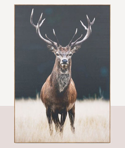 Photographic Framed Meadow Stag Canvas Print