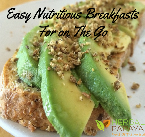 Easy Nutritious Breakfasts For on The Go