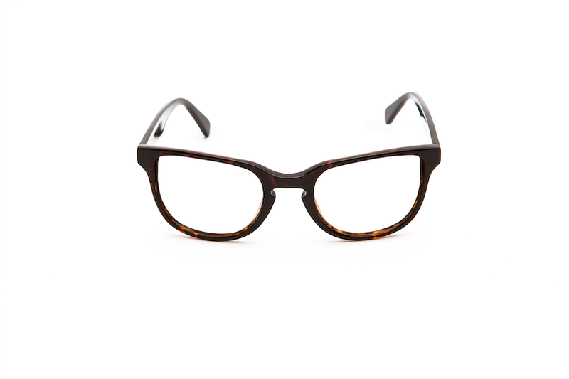 DEST HAVANA - OPTICAL - Eyeglasses - EstablishedStore.com