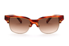 CIRO SL AMBER - EYEWEAR - EstablishedStore.com