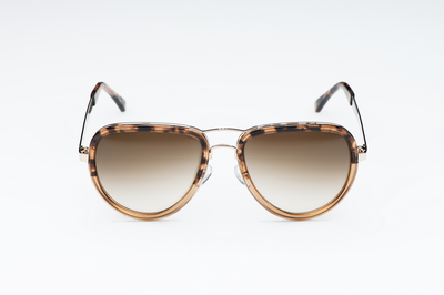 Curtiss Havana Fade - Aviator Sunglasses - EstablishedStore.com