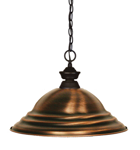 Z-Lite 100701BRZ-SAC Shark 1 Light Pendant with Bronze Steel Frame