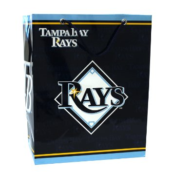 Tampa Bay Rays Gift Bag - Medium - Pro Specialties Group