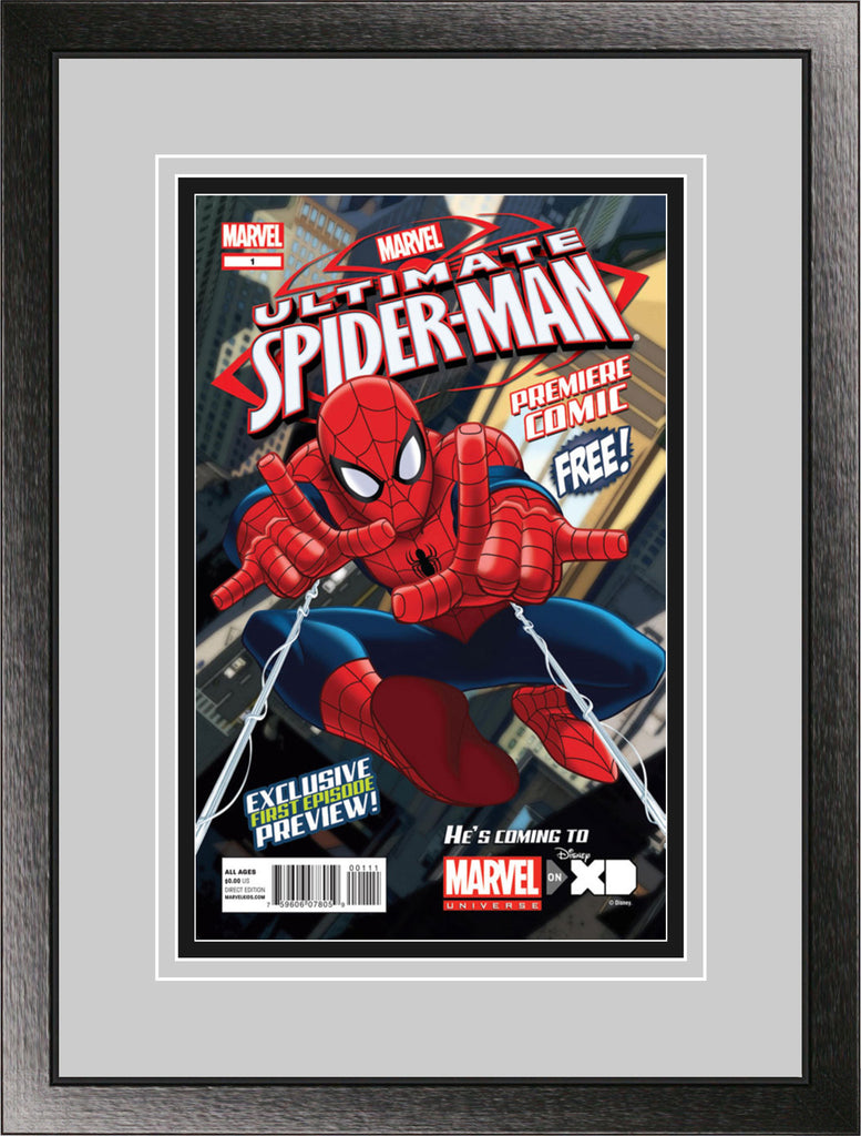 Single Comic Book Frame with Classic Moulding