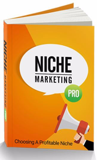niche marketing, online marketing, digital marketing, ecommerce niche, entrepreneur eBook, eBooks for Entrepreneurs