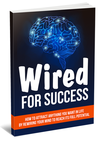 how to be successful, entrepreneur eBook, eBooks for Entrepreneurs