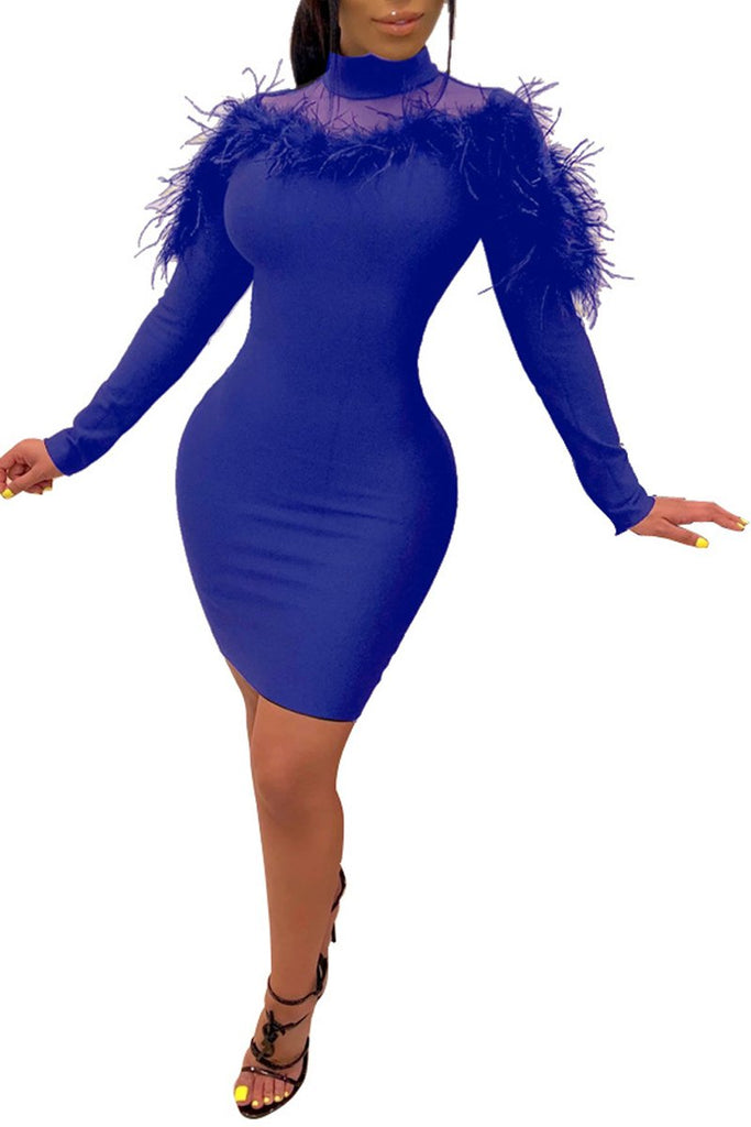 High Neck Feathers Long Sleeve Mini Dress