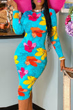 Floral Print Long Sleeve Bodycon Midi Dress