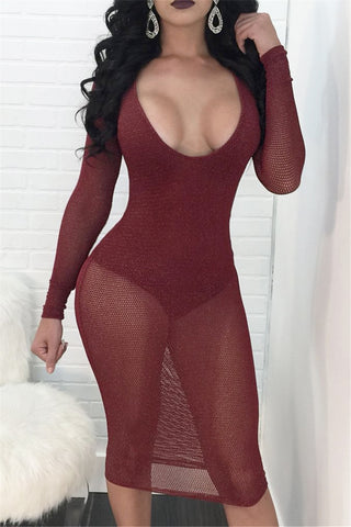 Sheer and Solid Mesh Dress