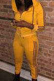 Solid Color Hooded Stripe Zipper Two Piece Outfits