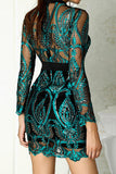 Sequin Embroidered See-through Mini Dress