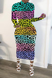 Colorful Leopard Print Long Sleeve Dress