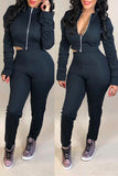 Zipper Up Solid Color Long Sleeve Casual Two Piece Outfits
