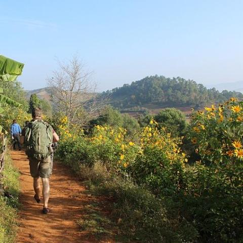 Hsipaw- Phan Khan Village (Day Return Walking Tour) - Alamanda Travels, Myanmar